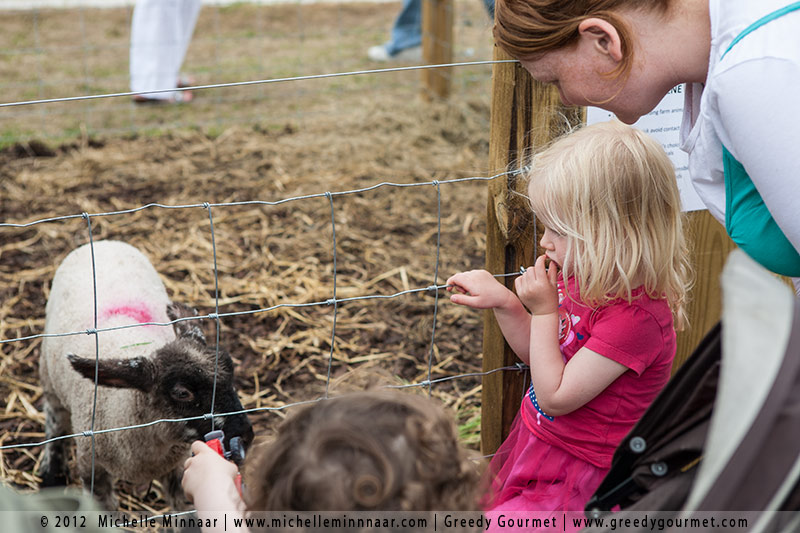 Feeding milk to lambs at Bloom in the Park