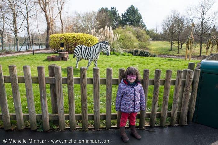 Zebra at Legoland Windsor