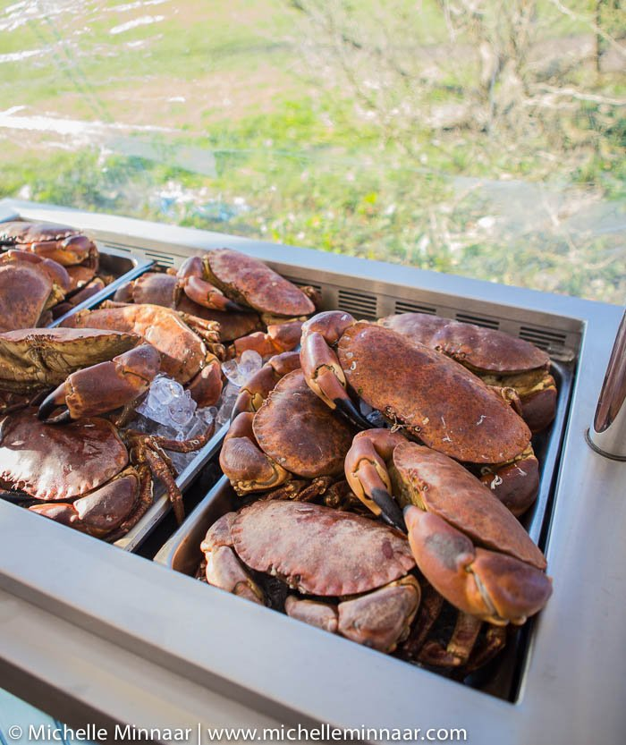 Crabs ready for cooking