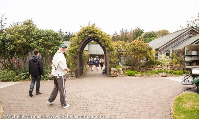 Tresco Abbey Gardens