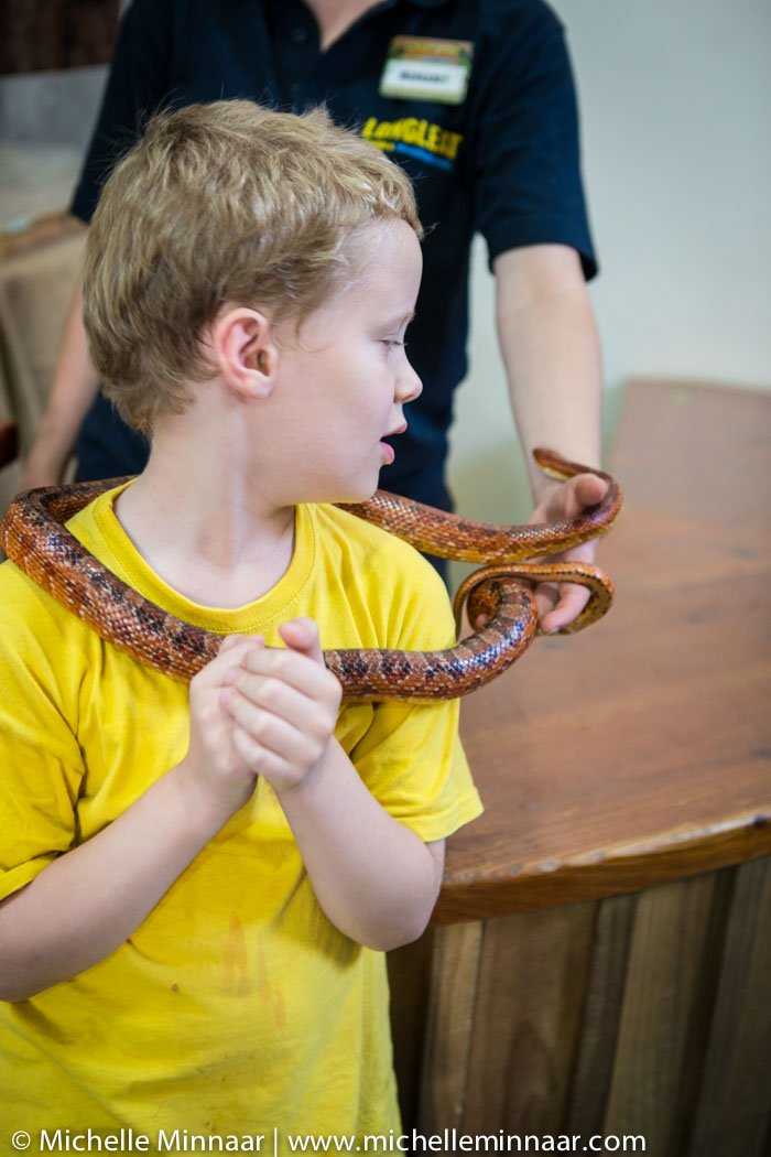 Hands on Snake Experience