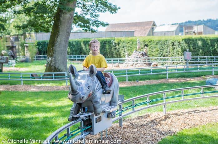 Rockin Rhino Ride