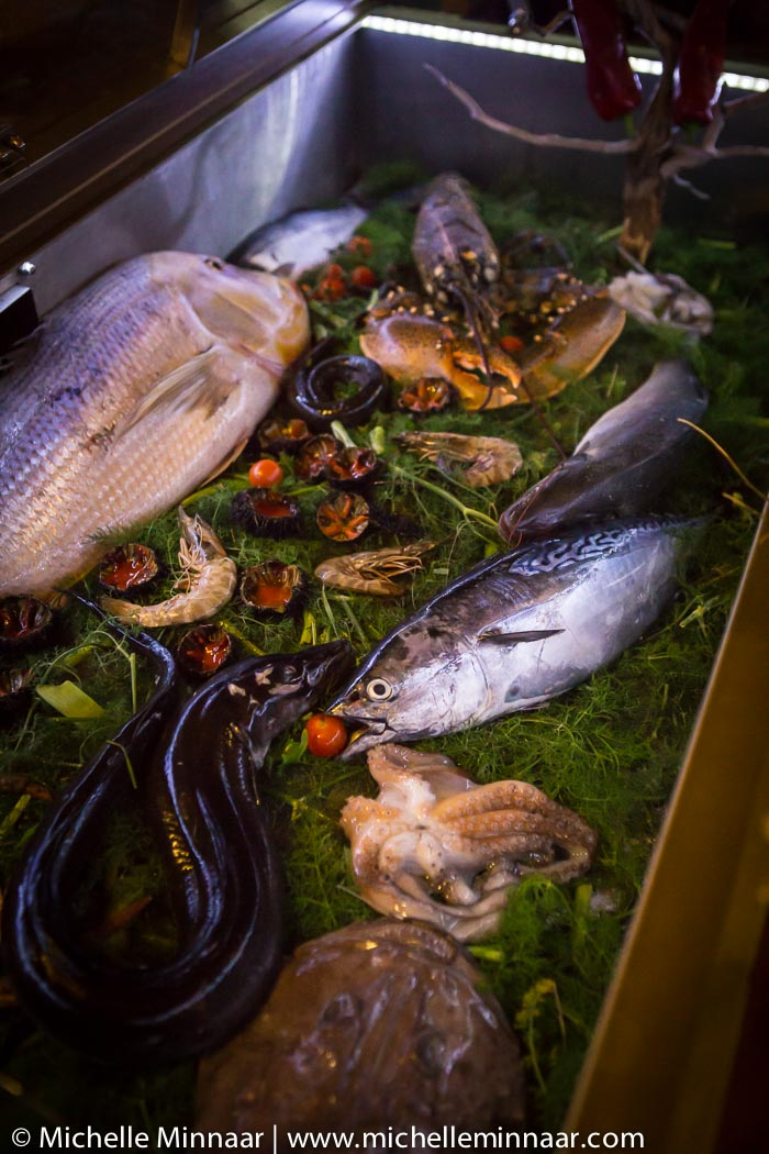 An array of fresh seafood
