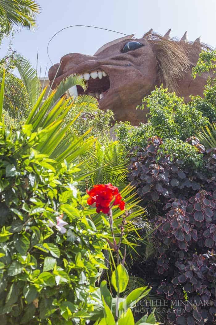 Big Dragon in jungle