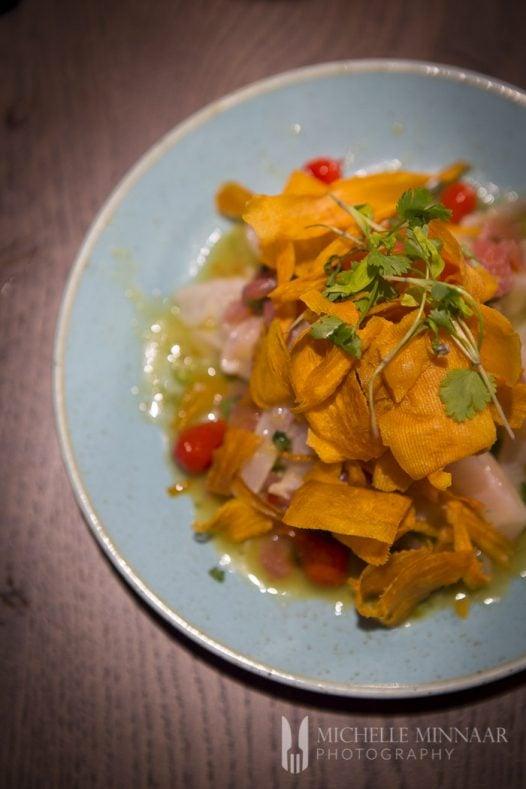 South American fish starter
