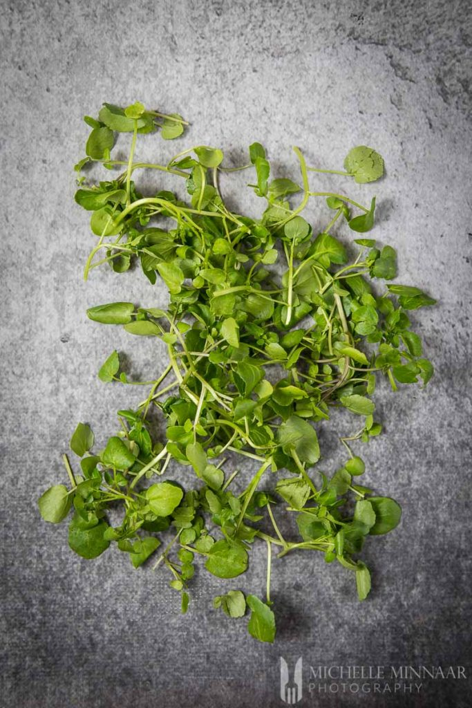 Watercress Fresh