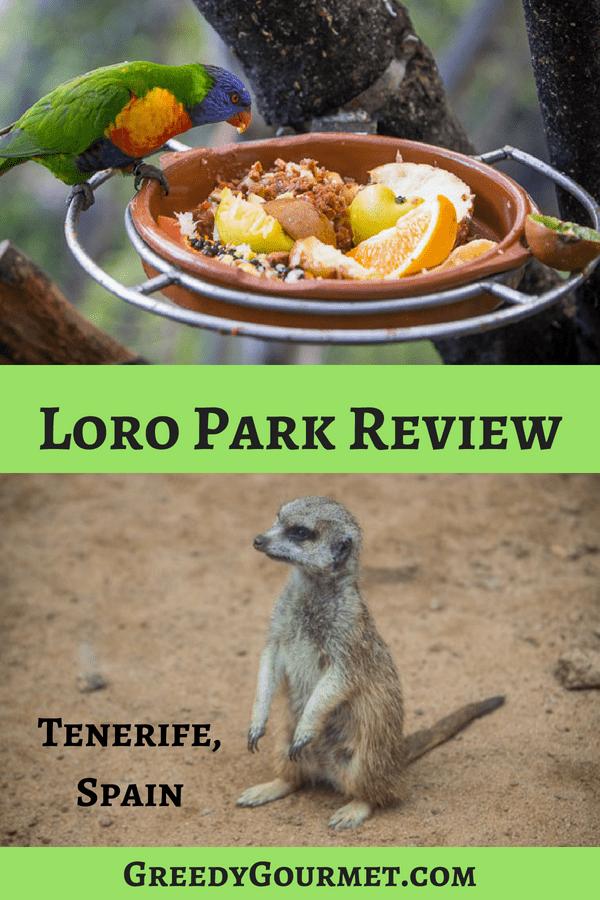 Loro Park 2 Pin