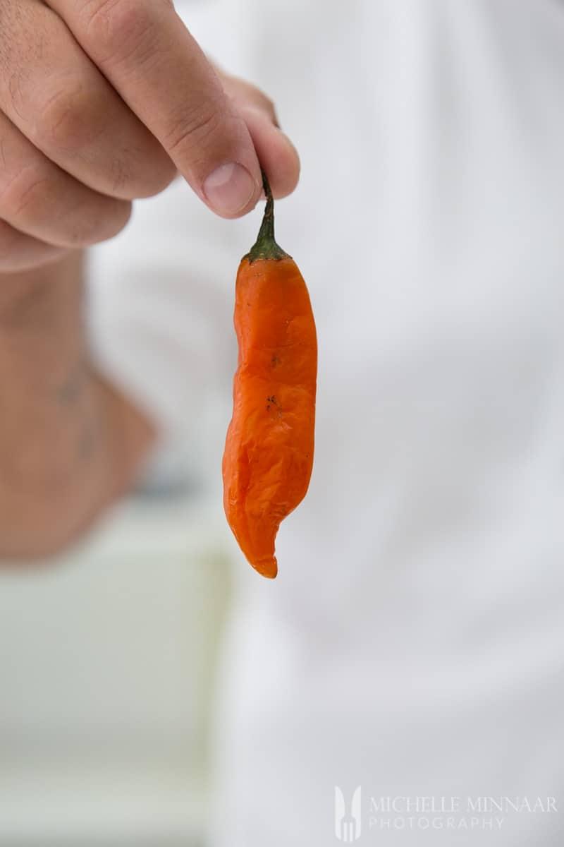 Pepper Aji