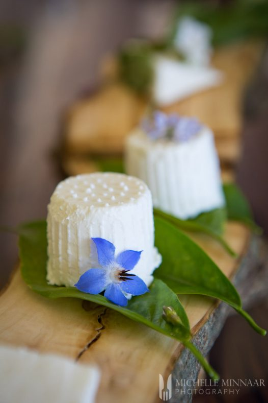 Ricotta Goats Cheese sitting on a sage leaf with a blue flower