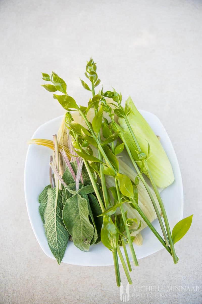 Asparagus Sage Cardi