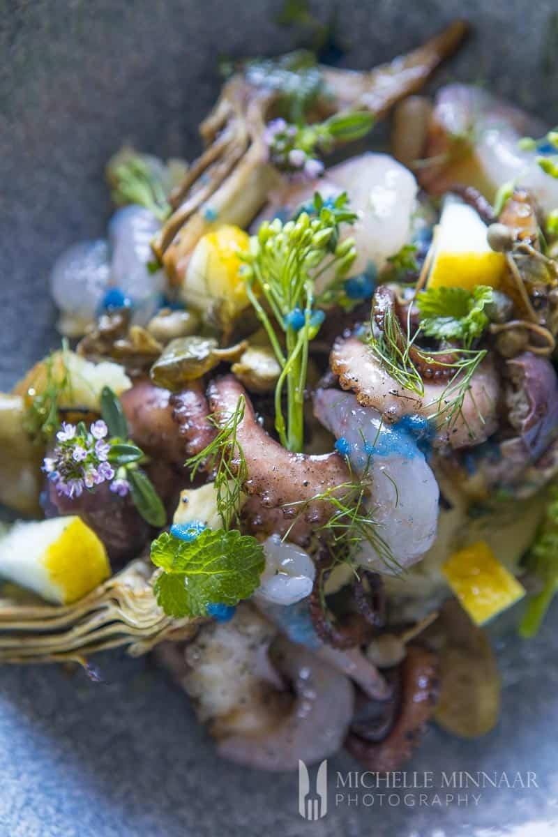 Salad Octopus