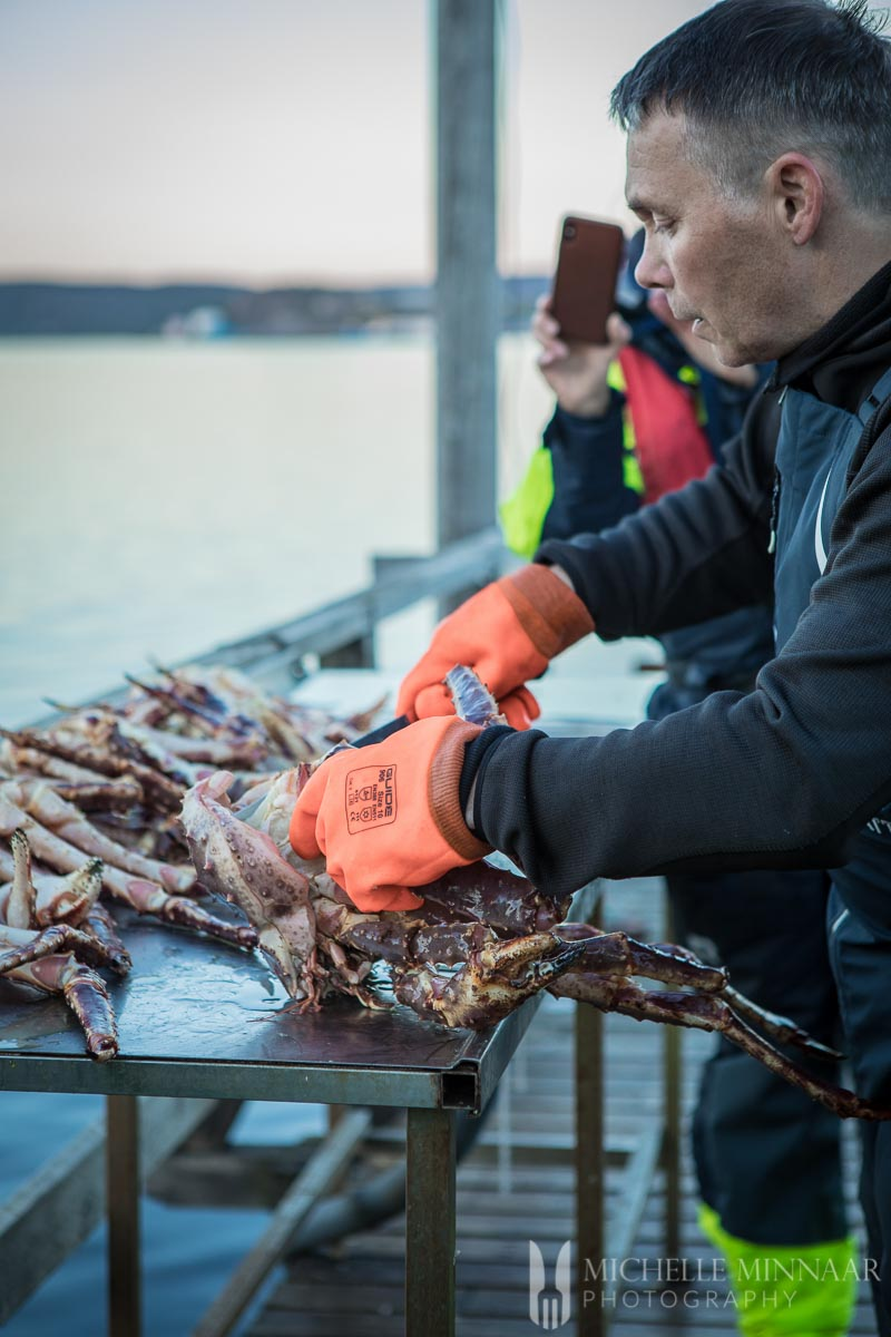 A fisherman preparing a crab for steamed crab legs