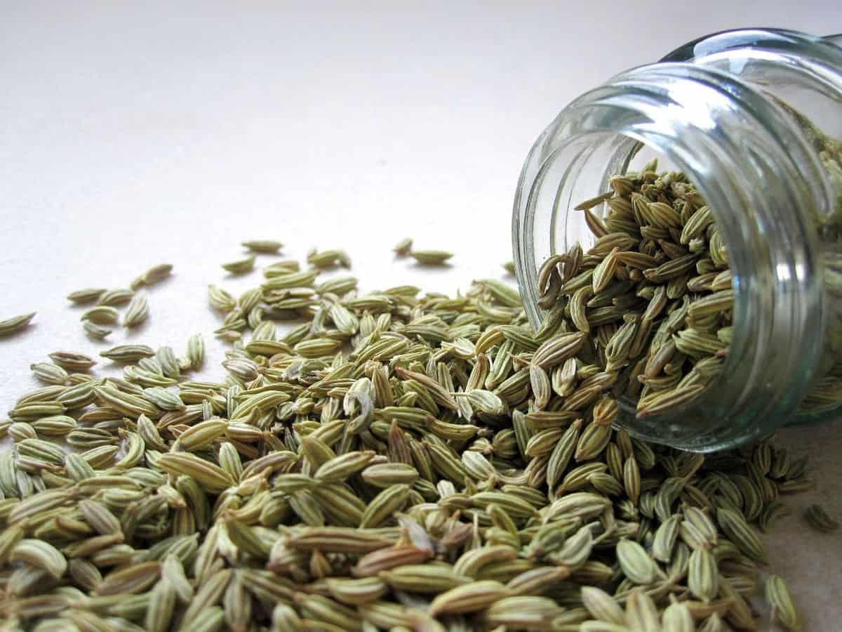 A jar spilling fennel seeds