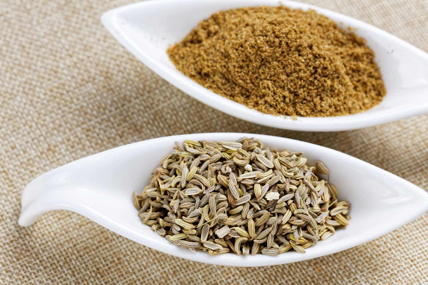 fennel seeds and ground fennel