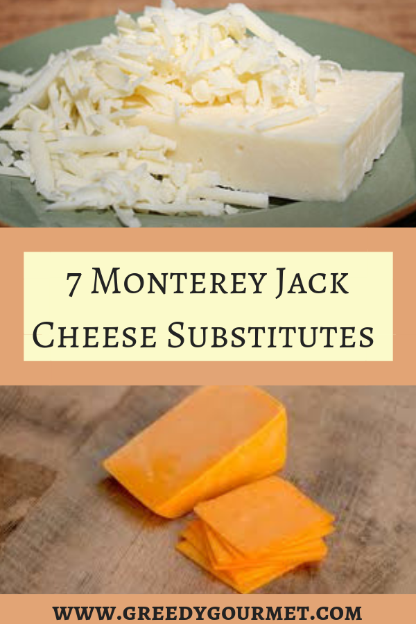 Monterey Jack Cheese Pin