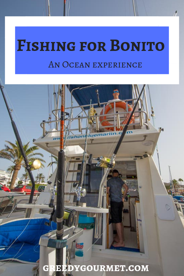 Fishing for Bonito is an experience of a lifetime. You can experience open water fishing for Atlantic bonito while you visit one of the Gran Canary Islands. #fishing #grancanary #travel