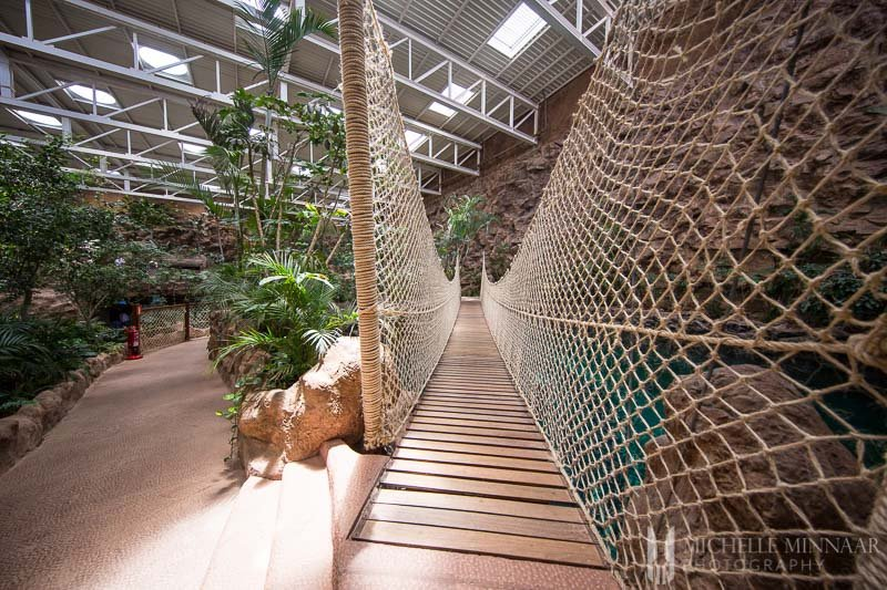 A bridge made out of netting
