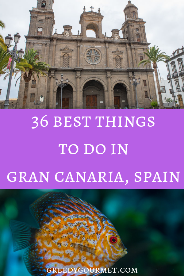 This list of 36 best things to do in Gran Canaria is one of the best guides around if you are planning your trip to the Canary Islands. Explore the island!