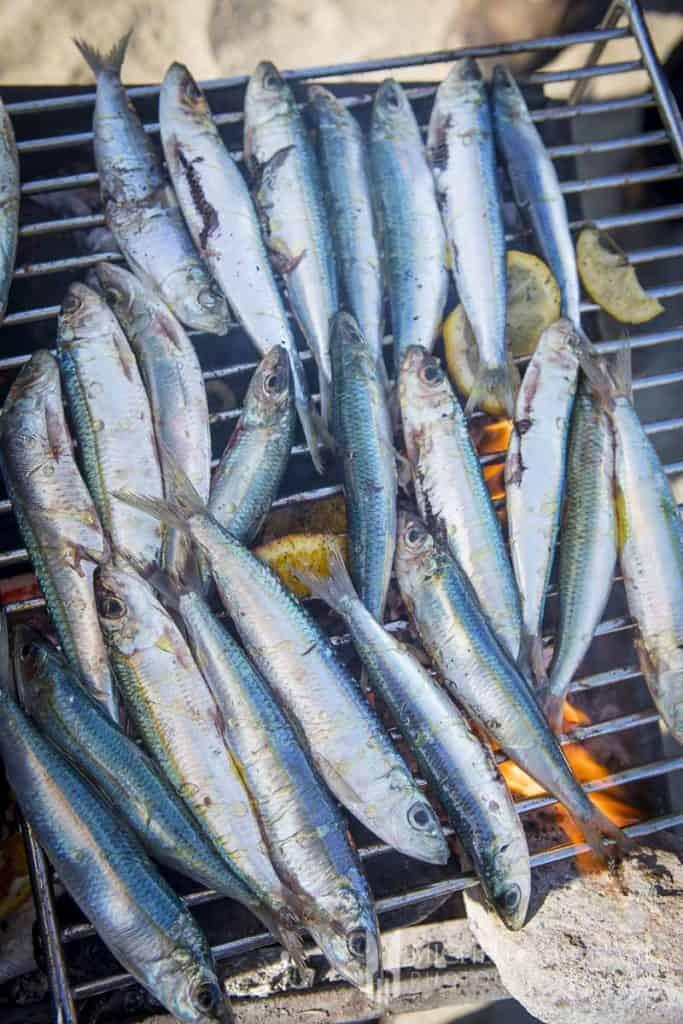 Sardines Barbecued