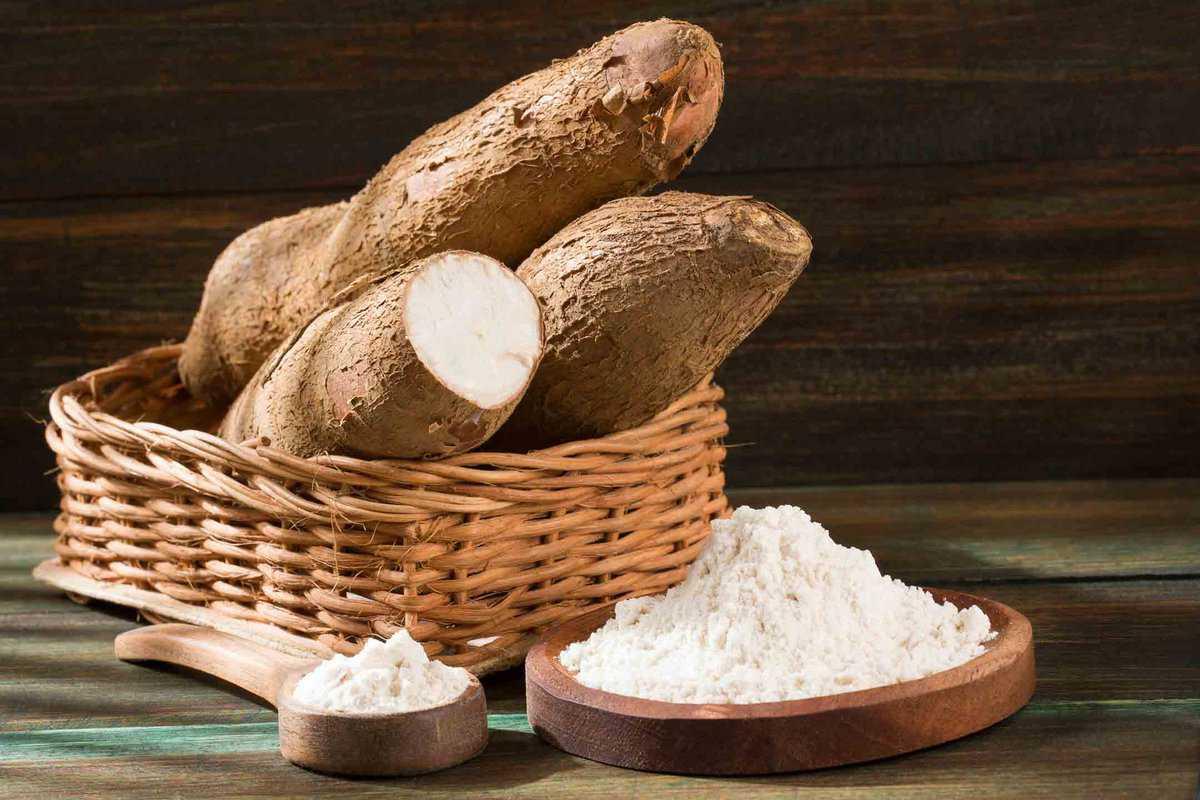 Whole white cassava flour