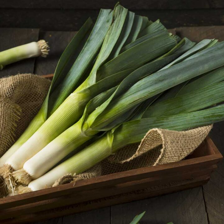 A bunch of green leeks