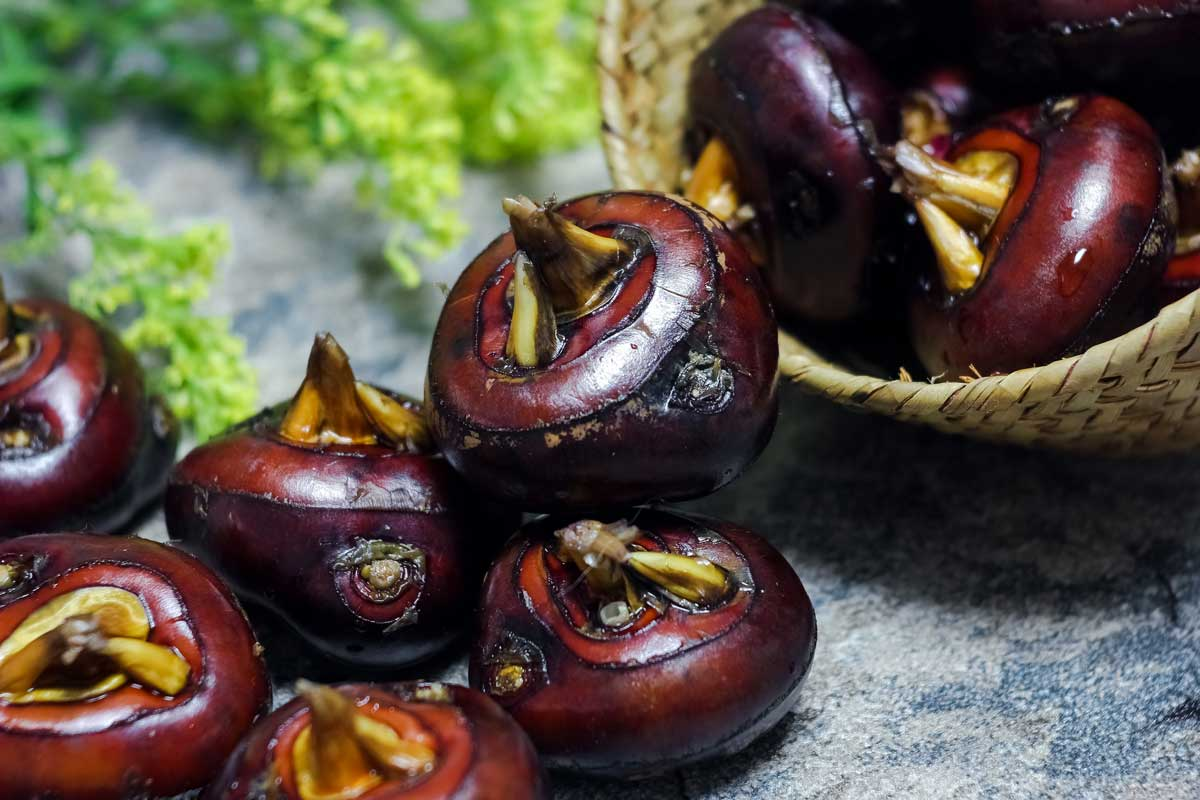 Purple whole water chestnuts