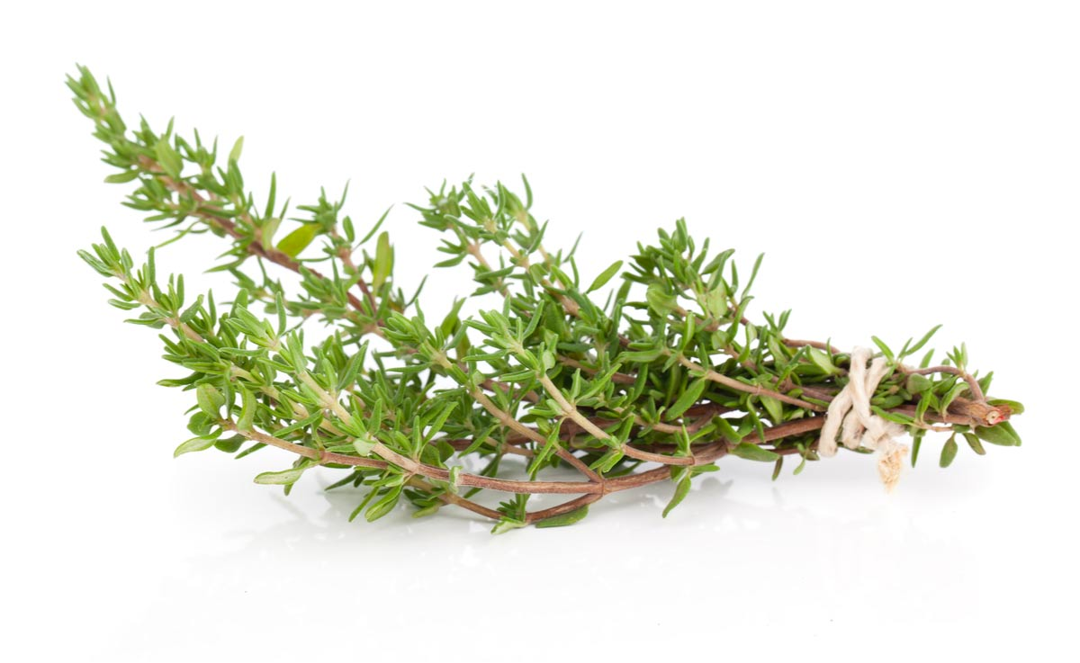 Fresh thyme leaves