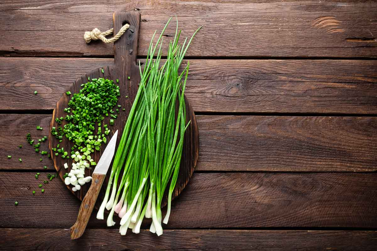 A green bunch of scallions