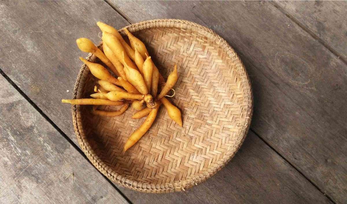 Orange fingerroot in a brown basket