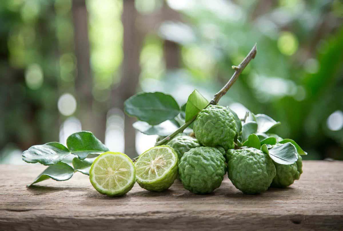 whole green kaffir limes