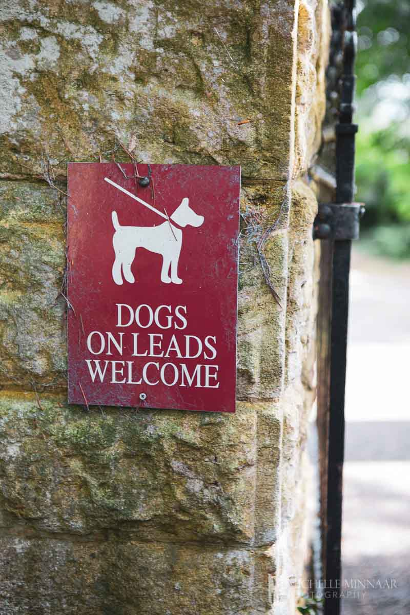 Dogs on leads welcome sign hanging on a tree
