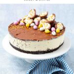 Whole Easter Egg Cheesecake on a stand
