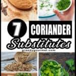 Coriander Substitutes