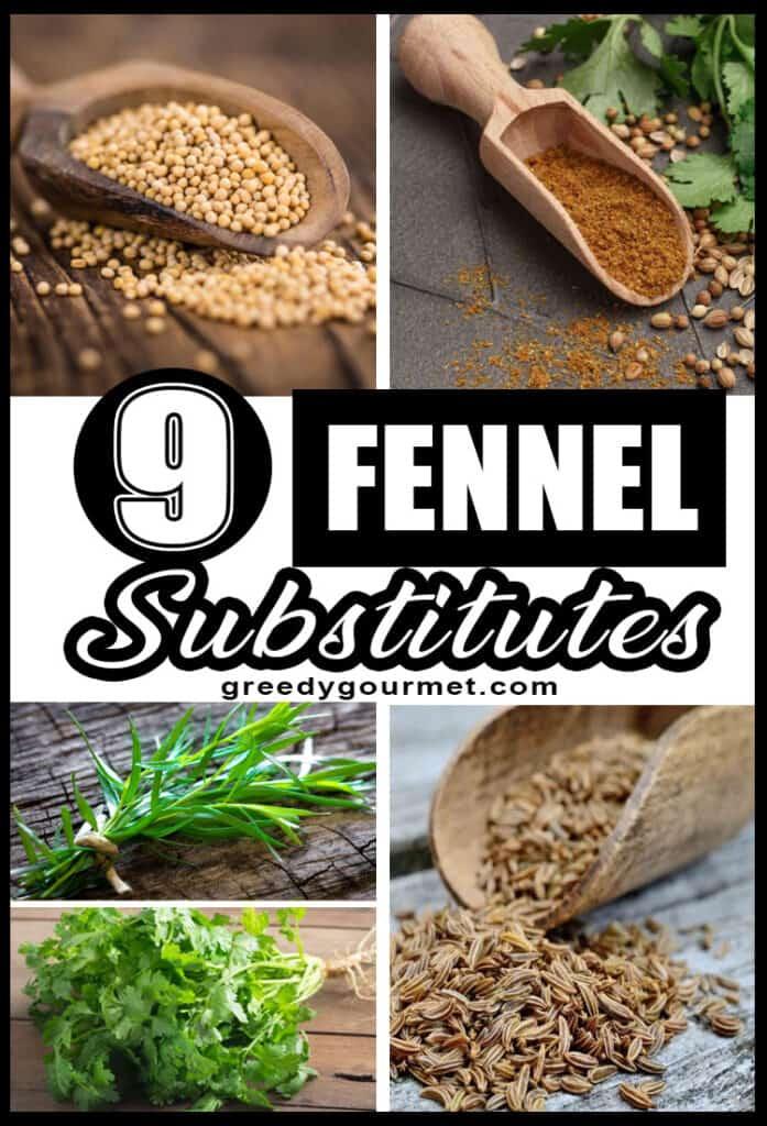 Fennel Substitutes