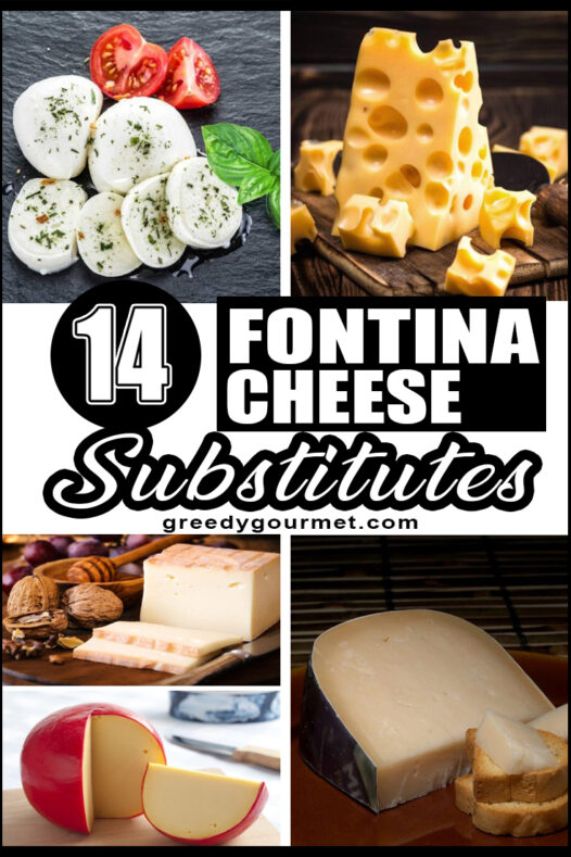 14 Fontina Cheese Substitutes