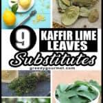 Kaffir Lime Leaves Substitutes