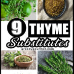 9 Thyme Substitutes